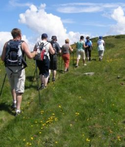 hiking_poles_sticks_nordic_walking_summer_active_holiday_0