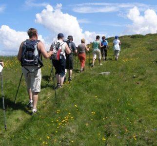 hiking_poles_sticks_nordic_walking_summer_active_holiday_0